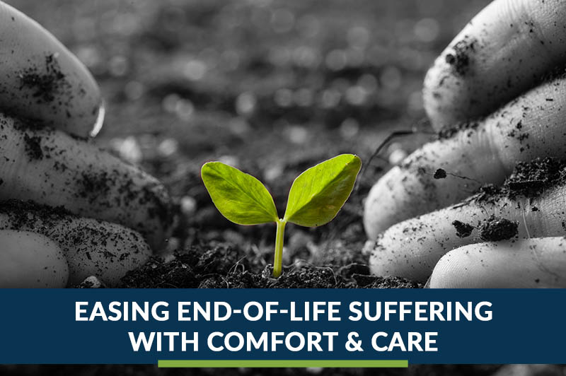 easing end of life suffering with comfort & care